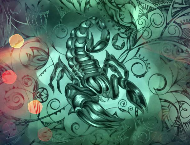 Скорпион рисунок, интуитивные карты Хранитель нежности