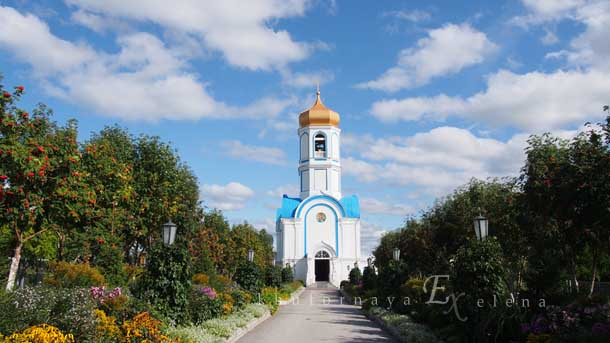 Колыванский монастырь деревня Колыванский монастырь на фоне неба