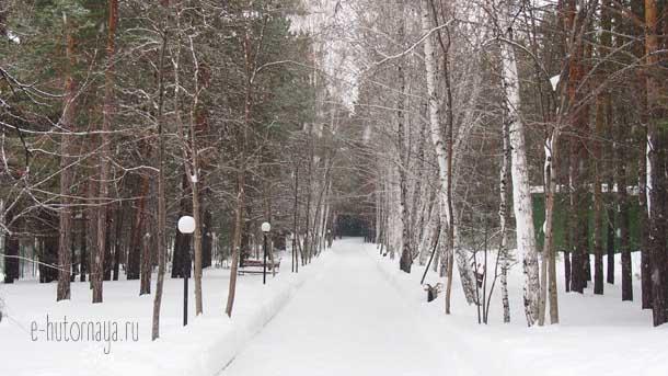 Отель Борвиха Бердск Заснеженная аллея