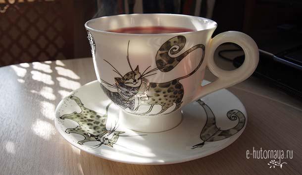 Замечать красоту вокруг Чашка с кошками